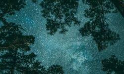 Horoskop: 20 juni stjärntecken