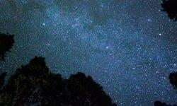 Horoskop: 24 juni stjärntecken