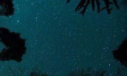 Horoskop: 28 juni stjärntecken