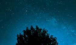 Horoskop: 1 juli stjärntecken