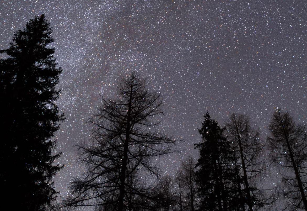 4 juli stjärntecken