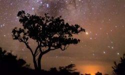 Horoskop: 5 juli stjärntecken