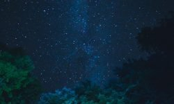 Horoskop: 12 juli stjärntecken