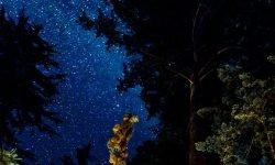 Horoskop: 14 juli stjärntecken