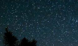 Horoskop: 23 juli stjärntecken