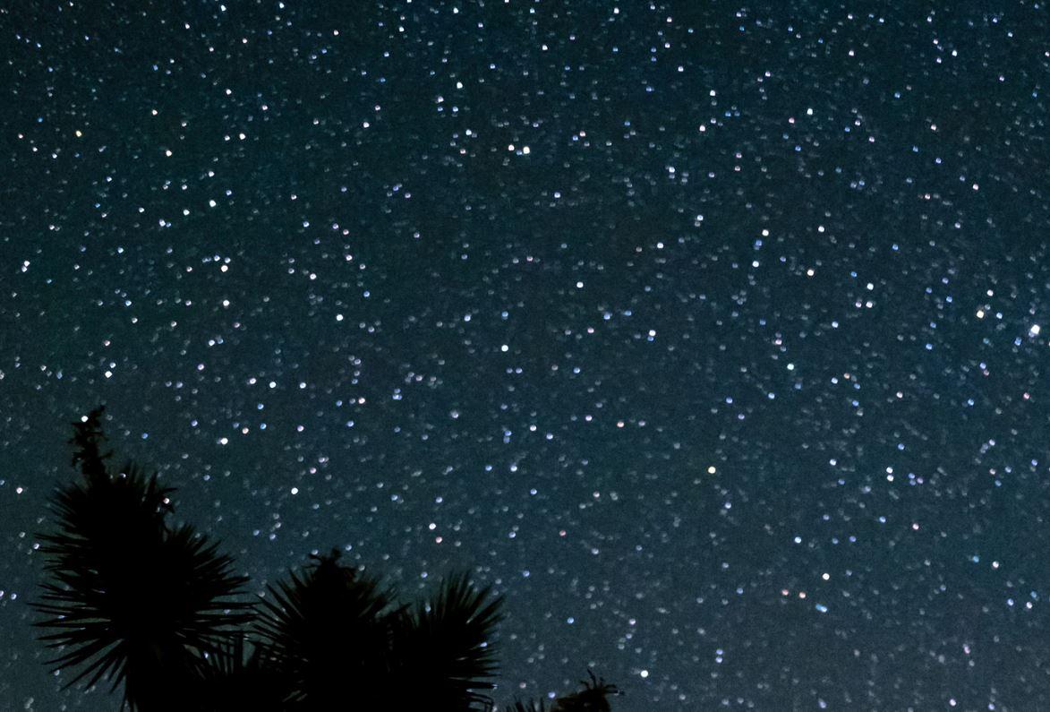 23 juli stjärntecken