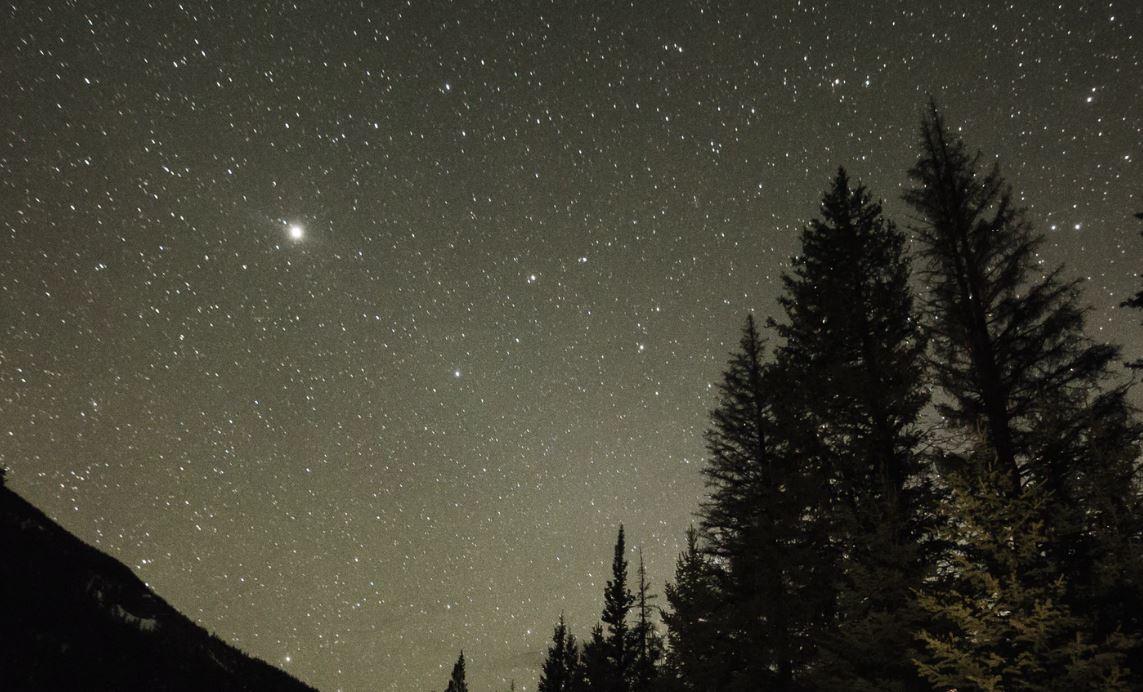 24 juli stjärntecken