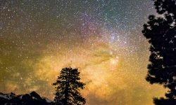 Horoskop: 31 juli stjärntecken