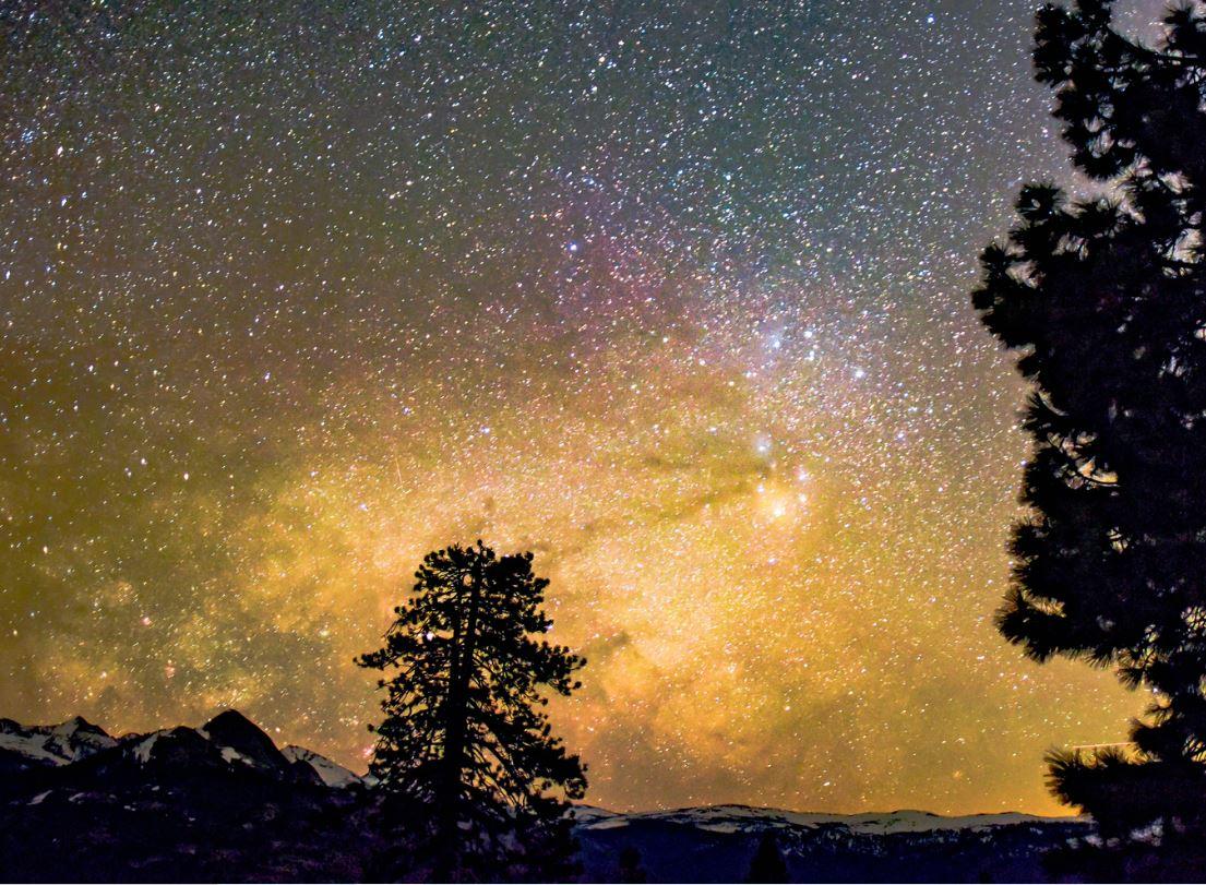 31 juli stjärntecken