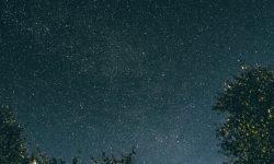 Horoskop: 2 augusti stjärntecken