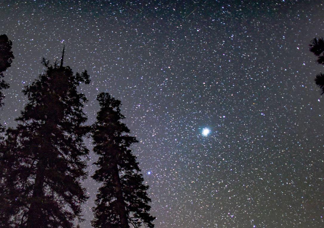 4 augusti stjärntecken