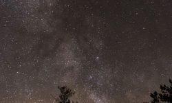 Horoskop: 8 augusti stjärntecken