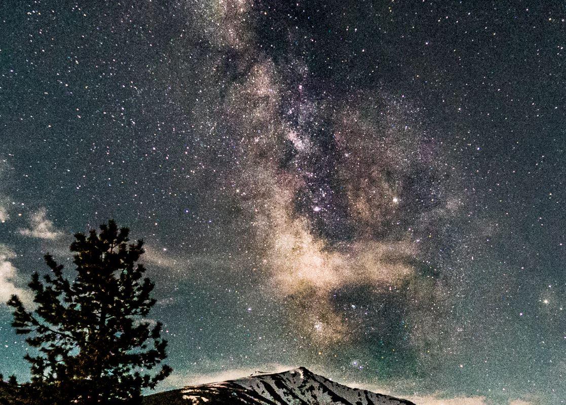 13 augusti stjärntecken