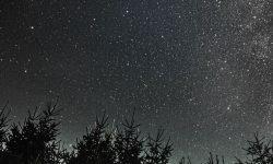 Horoskop: 17 augusti stjärntecken