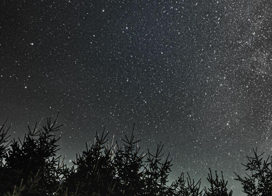 17 augusti stjärntecken