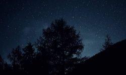 Horoskop: 26 oktober stjärntecken