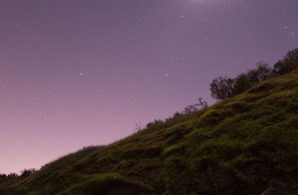 4 november stjärntecken