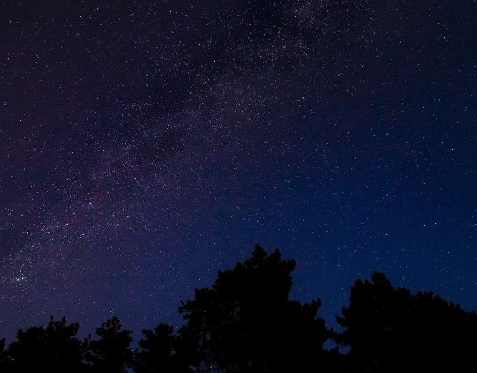 10 november stjärntecken