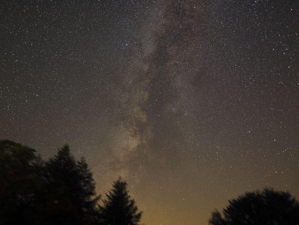 11 november stjärntecken