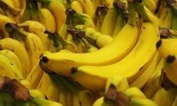 Är banan nyttigt? Allt för Hälsan