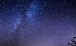 Horoskop: 14 november stjärntecken