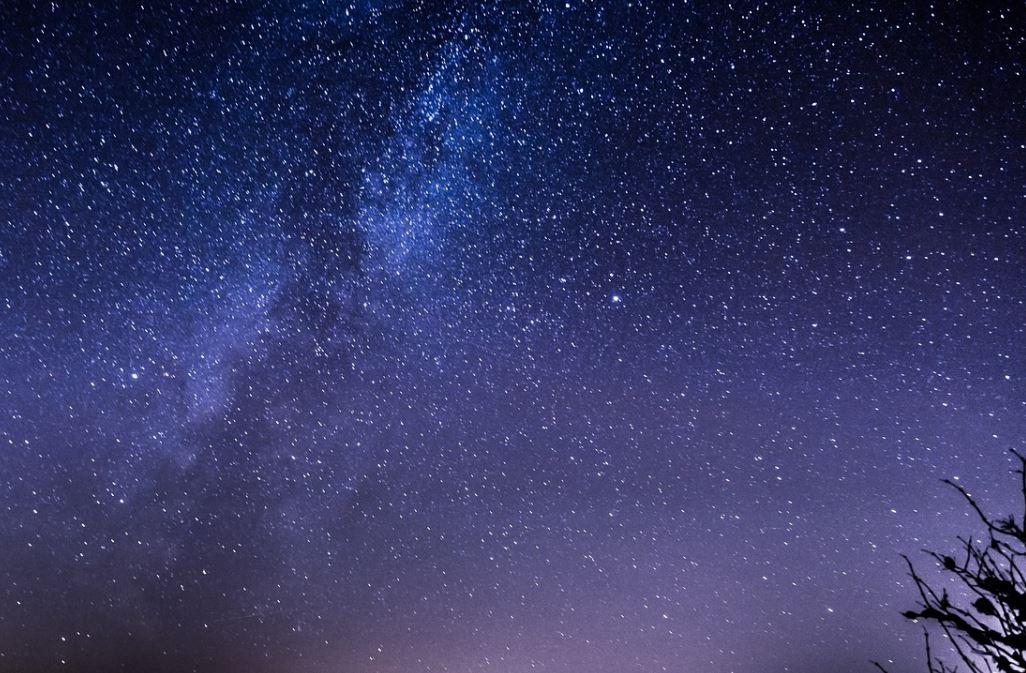 14 november stjärntecken