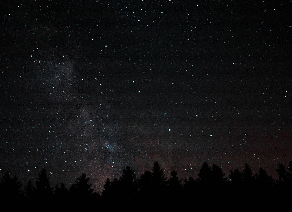 15 november stjärntecken