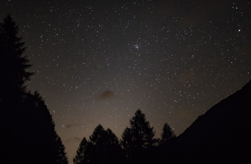 28 november stjärntecken