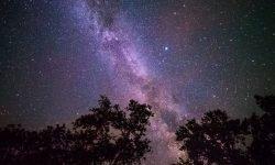 Horoskop: 4 december stjärntecken