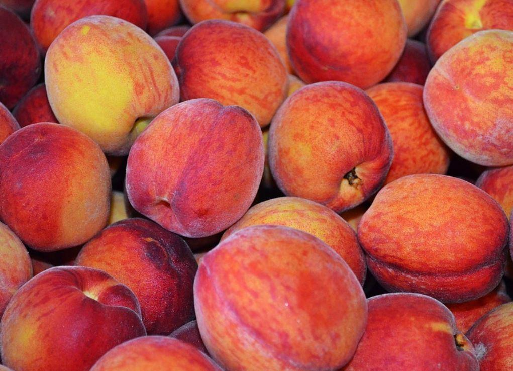 persika nyttigt