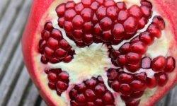 Är granatäpple nyttigt? Allt för Hälsan