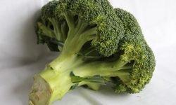 Är broccoli nyttigt? Allt för Hälsan