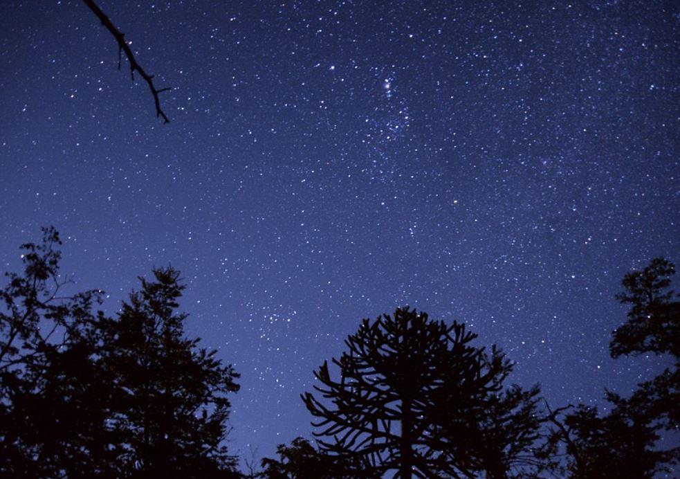 28 december stjärntecken